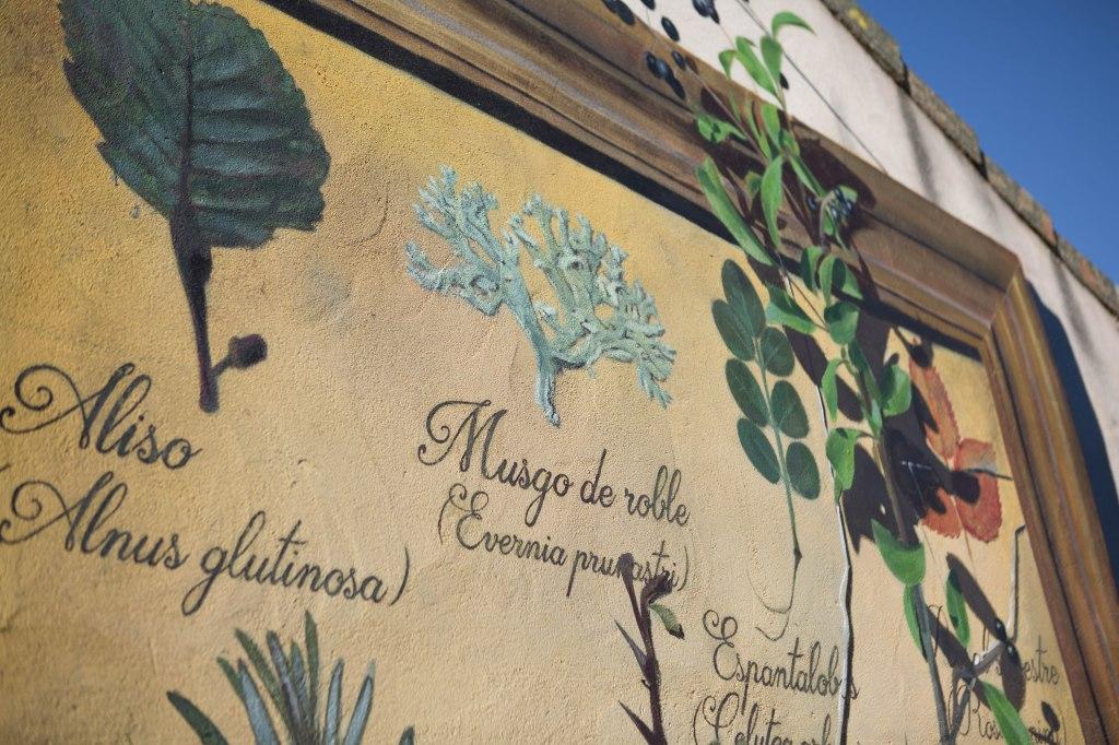 sr-moman-mural-plantas-detalle-1