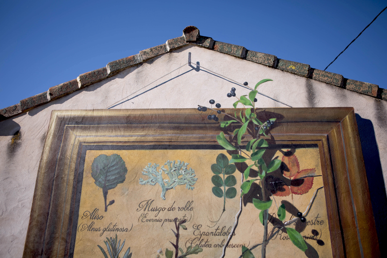 sr-moman-mural-plantas-detalle-3