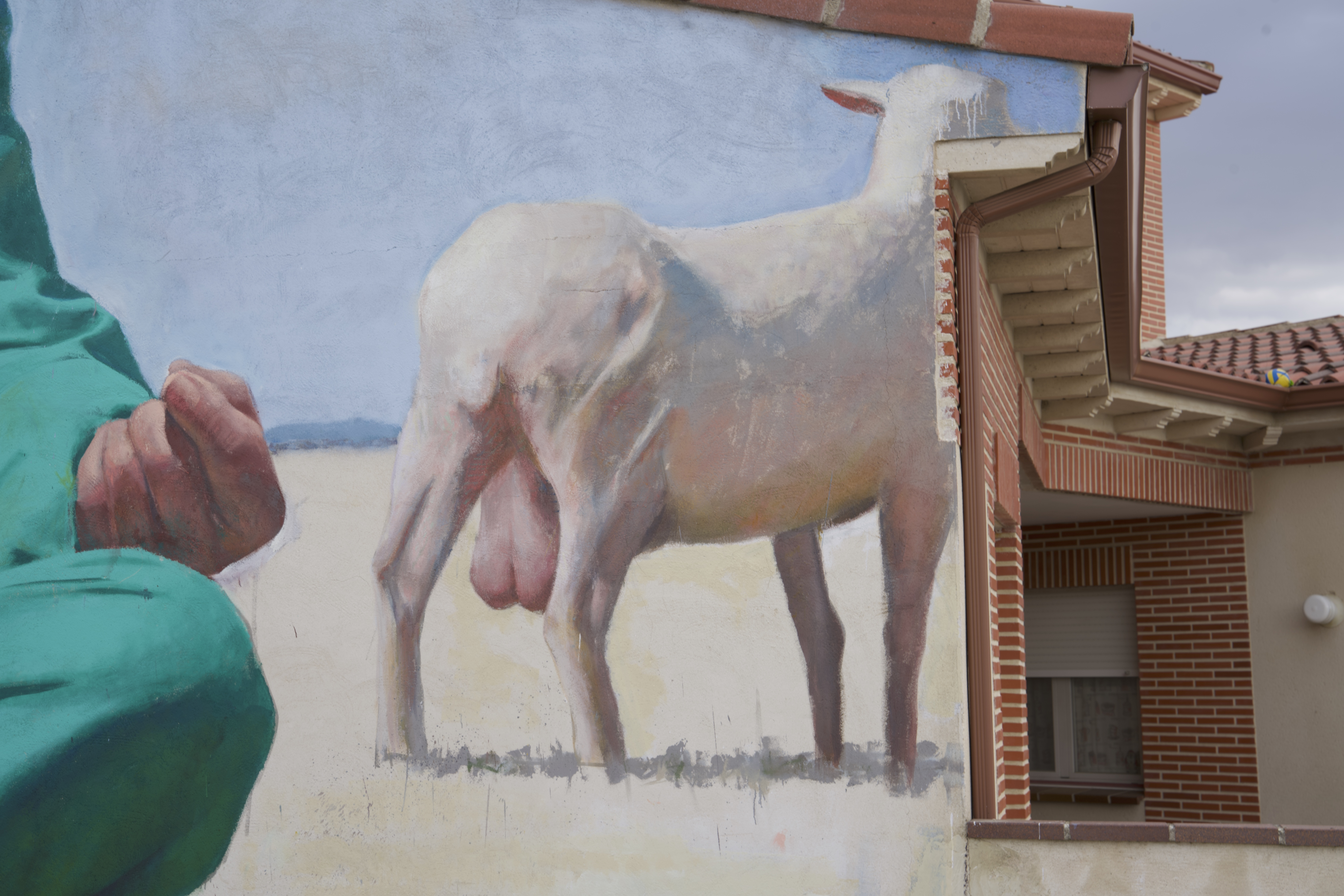 roman linacero sr moman pastor3